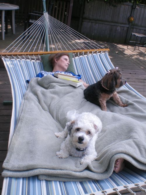 Naptime on the deck.